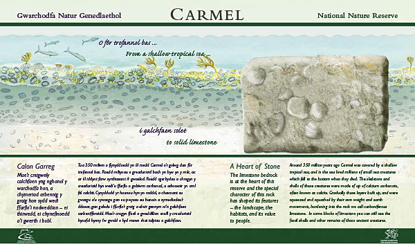 Limestone interpretive panel. Client: Countryside Council for Wales.